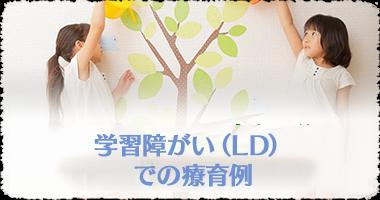 学習障がい(LD)での療育例